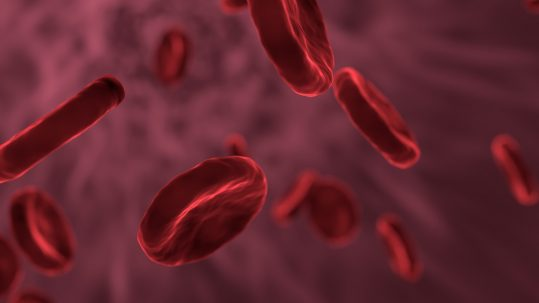 Does PRP Work for Osteoarthritis